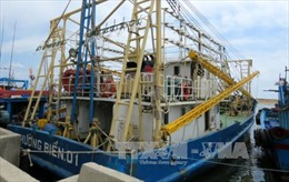Sẽ báo cáo Chính phủ về việc tàu vỏ thép 'chưa dùng đã hỏng'
