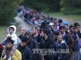 Hội nghị thượng đỉnh G7: Các nhà lãnh đạo vẫn bất đồng về vấn đề di cư