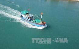 Xử lý dứt điểm tình trạng tàu cá vi phạm vùng biển nước ngoài