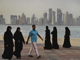 UAE chặn sóng các kênh truyền hình của Qatar