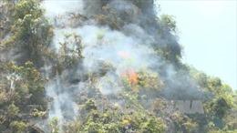 Kịp thời dập tắt cháy rừng tại Quần thể danh thắng Tràng An, Ninh Bình