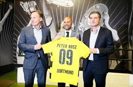 Dortmund bất ngờ bổ nhiệm Peter Bosz làm HLV trưởng