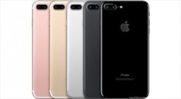 Phát hiện lô hàng điện thoại iPhone, iPad không rõ nguồn gốc