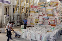 Doanh nghiệp xuất khẩu gạo chờ được 'cởi trói'