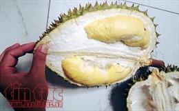 Thái Lan sắp gửi trái sầu riêng lên không gian