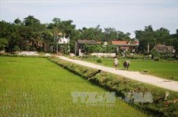 Đăk Tơ Lung tăng tốc để sớm về đích trong xây dựng nông thôn mới: