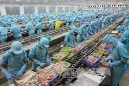 Xuất khẩu cá tra tăng trưởng nhẹ, xuất hiện một số thị trường mới nổi quan trọng