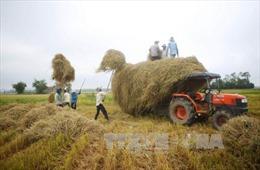 Cơ giới hóa trong thu hoạch giúp xử lý triệt để nguồn rơm rạ
