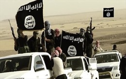 IS mất 60% lãnh thổ,  Thủ tướng Iraq tới Mosul tuyên bố chiến thắng