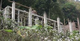 Cần sớm xử lý việc xây dựng trái phép ở Vườn Quốc gia Ba Bể