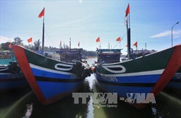 Sản lượng khai thác và chế biến thủy sản của Thừa Thiên - Huế tăng cao