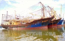 Thủ tướng giao Bộ Công an điều tra vụ tàu vỏ thép kém chất lượng