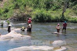 Kỷ luật 2 cán bộ buông lỏng quản lý để doanh nghiệp xây đập, chặn suối nuôi cá