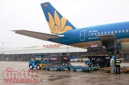 Vietnam Airlines vận chuyển hơn 10,3 triệu lượt khách