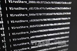 Các doanh nghiệp tìm kiếm giải pháp bảo vệ khỏi virus tấn công đòi tiền chuộc