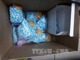 Quảng Trị: Bắt vụ vận chuyển 40.000 viên ma túy cùng súng quân dụng