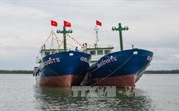 Ngư dân trẻ Quảng Nam tích cực vươn khơi, bám biển