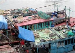 Bắt tàu sử dụng kích điện khai thác thủy sản trái phép