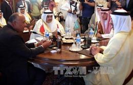 UAE tổ chức tấn công các trang mạng của chính phủ Qatar