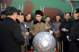 Điều gì xảy đến nếu Triều Tiên bán vũ khí hạt nhân cho kẻ thù của Mỹ