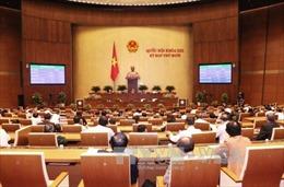 Giao thực hiện Chương trình giám sát của Quốc hội năm 2018