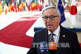 EU tính đáp trả ngay nếu Mỹ trừng phạt Nga