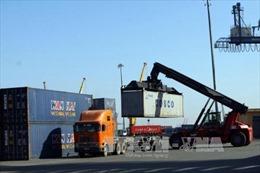 Cục Hàng hải đề nghị hãng tàu đề xuất mức miễn giảm phí lưu container tồn đọng