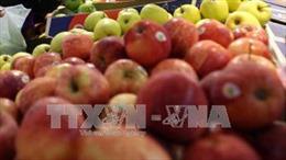 Mỗi tháng, người Việt bỏ ra 120 triệu USD để nhập khẩu rau quả