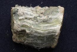Vận động đưa Amiăng trắng vào danh sách chất thải độc hại