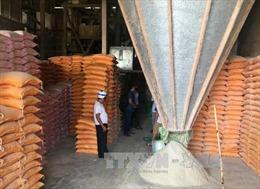 Đắk Lắk: Các cơ sở xay xát nông sản gây ô nhiễm trong khu dân cư