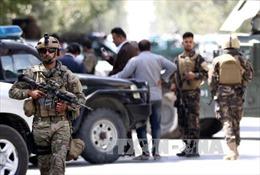Afghanistan tiêu diệt hàng chục phiến quân tại tỉnh Wordak
