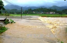 Từ nay đến cuối năm Việt Nam sẽ hứng chịu bao nhiêu cơn bão?