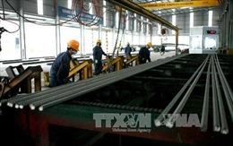 Hiệp hội Thép Việt Nam: Sẽ kiến nghị đưa việc Mỹ hạn chế nhập khẩu thép ra WTO khi cần thiết