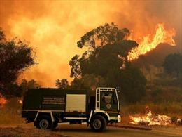 Italy bắt giữ 15 nhân viên cứu hỏa tình nguyện do cố tình gây cháy