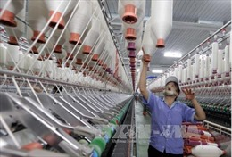 Vinatex và PVN bàn giải pháp tiêu thụ sản phẩm xơ sợi Đình Vũ