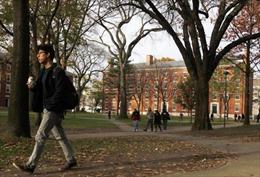 Mỹ thống trị bảng xếp hạng 500 trường đại học hàng đầu thế giới