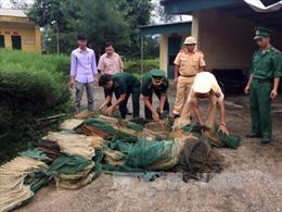 Quảng Ninh: Sử dụng kích điện, lồng bát quái để đánh bắt thuỷ sản trái phép