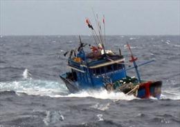 Cứu sống 6 ngư dân trên tàu đánh cá bị chìm ở Cô Tô - Quảng Ninh