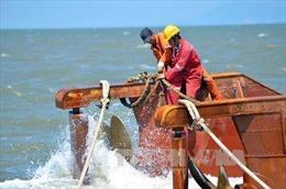 Phó Thủ tướng chỉ đạo phương án khai quật tàu cổ đắm tại vùng biển Dung Quất