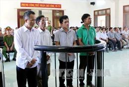 Tuyên án vụ phá rừng nghiêm trọng tại Phú Yên