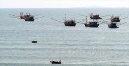 Xử lý mạnh tàu cá đánh bắt hải sản vi phạm vùng biển nước ngoài