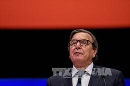 Cựu Thủ tướng Đức Schroeder đáp trả chỉ trích về công việc mới tại Tập đoàn Rosneft