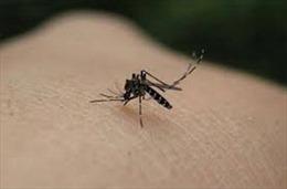 Những mẹo tránh muỗi đốt hiệu quả