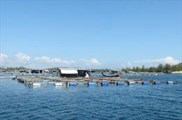 Vực dậy nghề nuôi trồng thủy sản ở Khánh Hòa