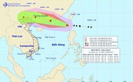 Chủ động ứng phó với bão Hato