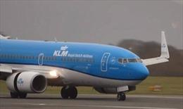 Một phi cơ duy nhất hạ cánh được khi bão Hato càn quét Hong Kong