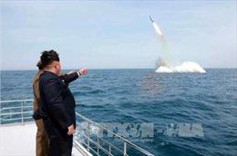 Truyền thông Nhật Bản: Triều Tiên có thể đang phát triển SLBM mới