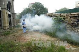 Xuất hiện thuốc diệt muỗi giả ở Hà Nội