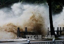 Trung Quốc ban bố cảnh báo vàng do bão Pakhar - Bão Hato gây thiệt hại nặng nề