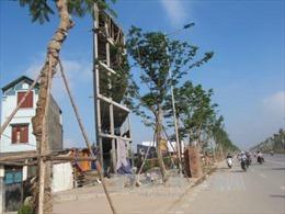 Xóa nhà 'siêu mỏng, siêu méo' tại Hà Nội: Không chỉ cần vốn